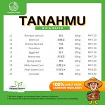 Picture of TanahMu Mix & Match